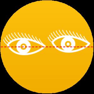 Stabilité du regard